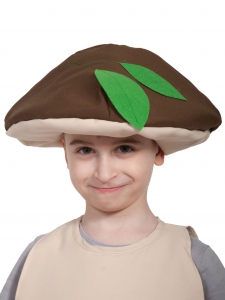 Шапочка гриба Боровика