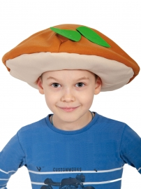 Шапочка гриба Подберёзовик